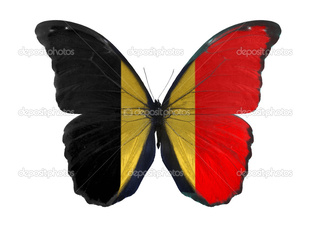 Indian Flag Butterflies: Butterfly In Belgium Flag Colors