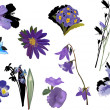 Isolated violet color flowers collection — Stock Vector #24182297