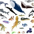 Royalty-Free Stock Vector Image: Large set of color sea animals