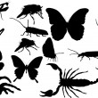 Stock Vector: Fourteen black isolated insects