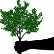 Black hand holding green tree — Stock Vector