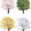 Four seasons trees collection — Stock Vector #24187581