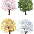 Four seasons trees collection — Stock Vector
