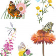 Collection of insects on flowers — Stock Vector