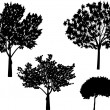 Four isolated trees silhouettes — Stock Vector