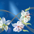 Three white lily flowers on blue — Stock Vector