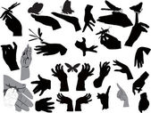 Set of human hands and insects isolated on white — Stock Vector