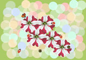 Small ladybugs on red and white flowers — Stock Vector