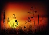 在日落时的草丛中的小蝴蝶 — 图库矢量图片