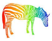 Zebra di colore arcobaleno isolato su bianco — Vettoriale Stock