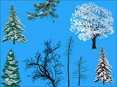 Trees in snow isolated on blue background — Stock Vector