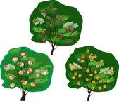 Trzech drzew owocowych na białym tle — Wektor stockowy
