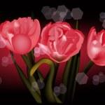 Red tulip flowers on dark background — Stock Vector #24197117