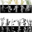 Bamboo collection on white and black background — Stock Vector #24197747