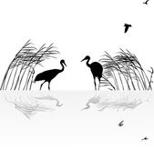 Two cranes in rush with reflection — Stock Vector
