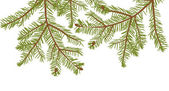 Fir branches isolated on white — Stock Vector