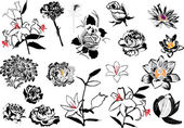 Flower sketches collection isolated on white — Stock Vector