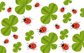 Green clover leaves and red ladybirds background — Stock Vector