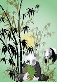 Panda in bamboo illustration — Stock Vector