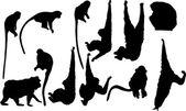 Twelve monkey silhouettes — Stock Vector