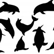 Eight dolphins isolated on white — Stock Vector