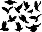 Twelve pigeon silhouettes — Vector de stock