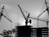 Grey illustration with cranes near building — Stock Vector