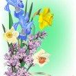 Spring flowers bouquet on light green background — Stock Vector
