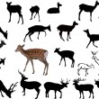 Twenty one deers illustration — Stock Vector