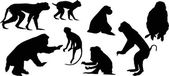 Eight isolated monkey silhouettes — Stock Vector