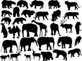 Thirty two animal silhouettes isolated on white — Stock Vector