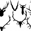 Collection of antler and horns — Stock Vector #34800797