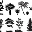 Black set of trees on white — Imagen vectorial