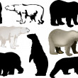Eight polar bears on white — Vector de stock