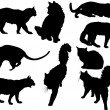 Nine isolated black cats — Vector de stock  #34805109