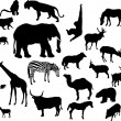 Animal silhouettes set isolated on white — Stock Vector