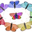 Stock vektor: Isolated rainbow colors butterflies