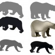 Six bears isolated on white — Stock Vector