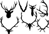 Collection of antler and horns — Stock Vector
