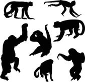 Seven black isolated monkey silhouettes — Stock Vector