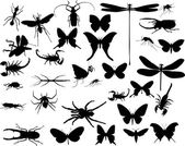 Insects and spiders collection on white — Stock Vector
