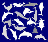 Eighteen dolphins isolated on blue — Stock Vector