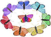 Isolated rainbow colors butterflies — Stock Vector