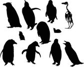 Penguin silhouettes set isolated — Vector de stock