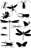 Thirteen isolated black insects — Stock Vector