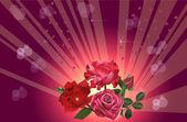 Flores rosa oscuras sobre fondo rojo — Vector de stock