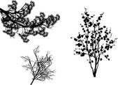 Set of black trees branches isolated on white — Stock Vector