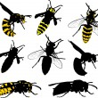 Eight wasps collection on white — Stock Vector #34815773
