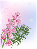 Pink orchids and green leaf — Stock vektor
