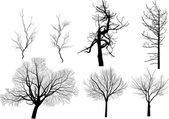 Set of seven bare trees isolated on white — Stock Vector